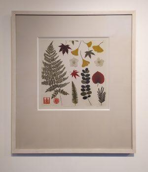 Graphic Studio Dublin •Jean Bardon: Pressed Leaves and ferns
