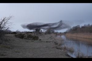 Screen Shot 2014-03-13 at 12.19.03-2