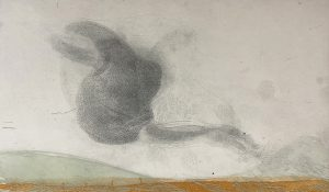 Graphic Studio Dublin •Vincent Sheridan: Glimpse of Starlings, etching, 33 x 19.8cm ed of 50 WEB