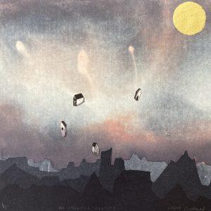 Niamh Flanagan, An Imagined Gravity