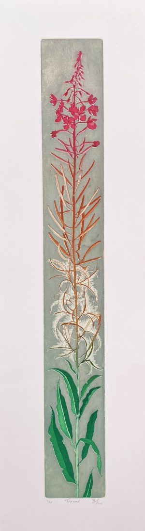 Paul Fitters, Fireweed WEB