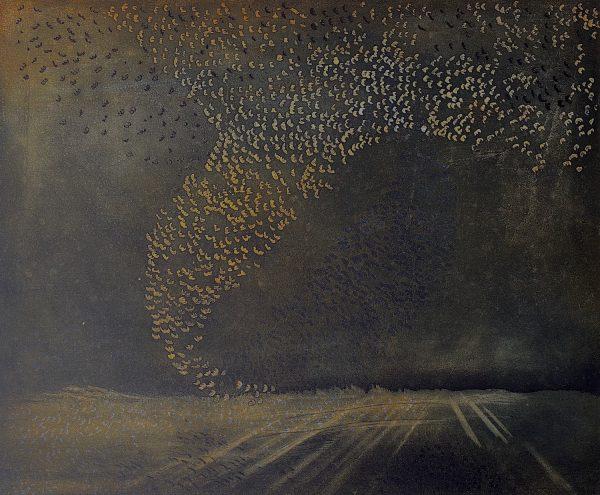 Vincent Sheridan, Refuge WEB