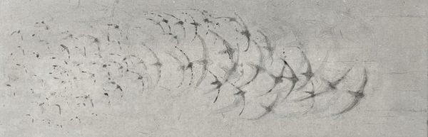 Vincent Sheridan, Starlings WEB