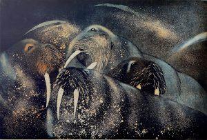 Graphic Studio Dublin •Vincent Sheridan: Walrus 1