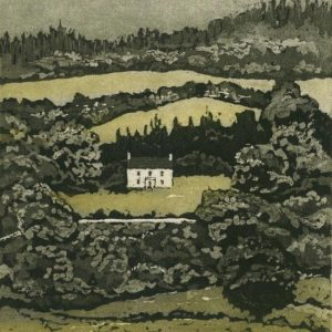 SusanEarly_GreenHill_aquatint_etching_Ed50_550x825